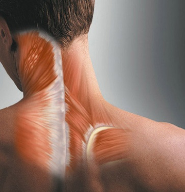 Muscle Spasms in Neck