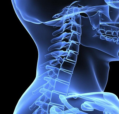 Best Pillow Cervical Neck Pain
